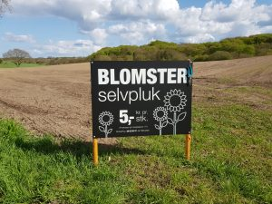 BlomsterSelvpluk